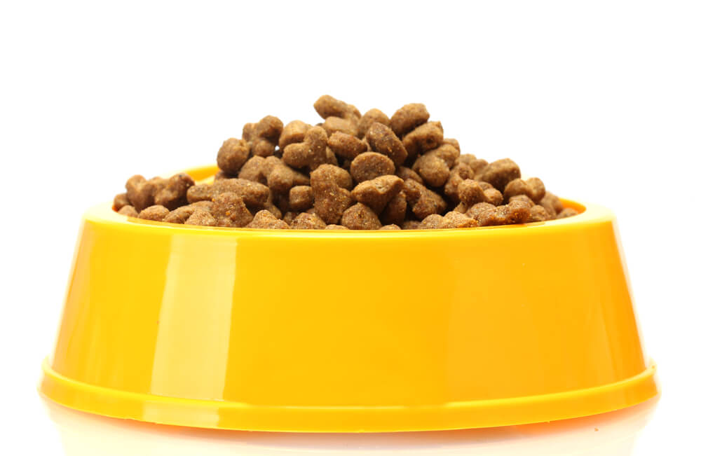 A bowl of dry cat food