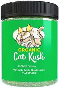 Cat Cush