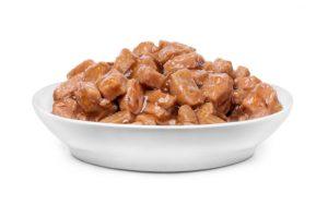 Bowl of wet cat food